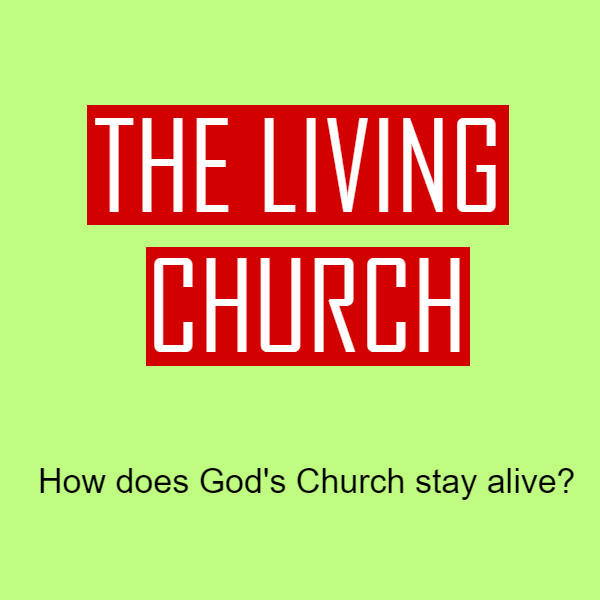 Web The Living Church - How does God church stay alive